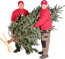 Beispiel bestellformular weihnachtsbaum hamburg for Weihnachtsbaumverkauf hamburg